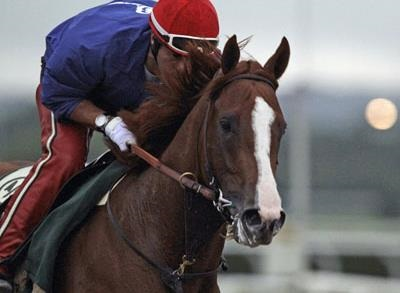 News video: At Belmont, California Chrome Races for History